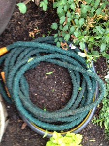 pocket hose my coiled